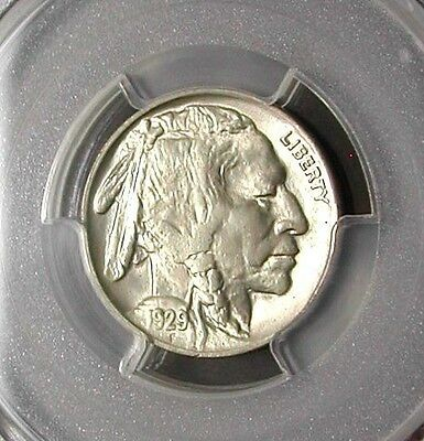 1929 Pcgs Ms65 Buffalo Nickel  >> White / No Toning / Clear Surfaces / Pq <<
