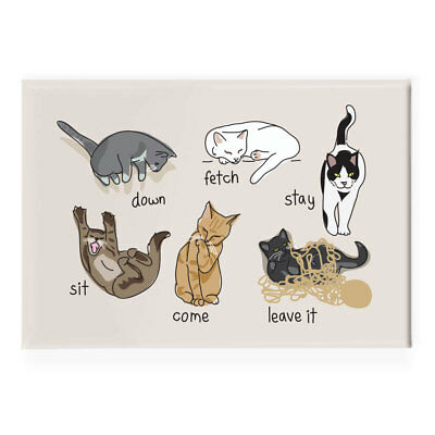 Cat Fridge Magnet - Funny Cats Being Cats - Refrigerator Magnets Cat Gifts