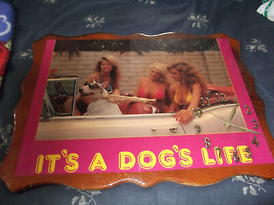 """Bikini Babes & Spuds Dog Wall Clock-Great For """"man Cave""""---15"""" X 22""""-Battery-Vg+"""