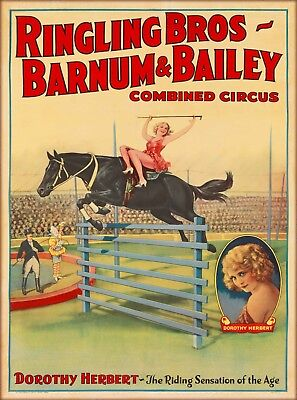 Ringling Brothers Dorothy Herbert Vintage Circus Travel Advertisement Poster