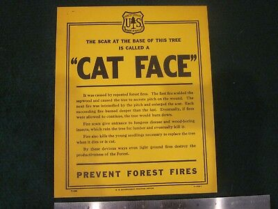 """US Forest Service Government Printing Office 9"""" x 11"""" Cat Face Fire Scar Sign"""