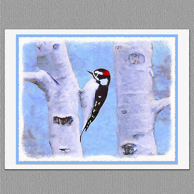 6 Christmas Cards Downy Woodpecker Wild Bird Art Note Greeting Cards