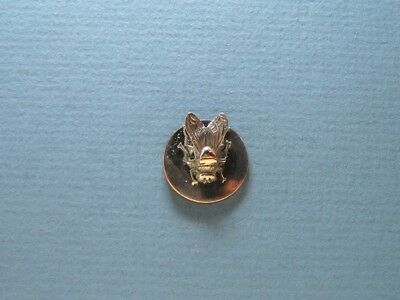 Amazing Antique Button Insect Realistic Fly Back Mark