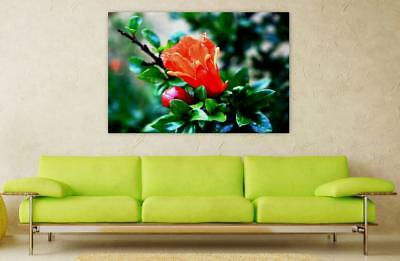 Canvas Poster Wall Art Print Decor Flower Bud Orange Leaves Green