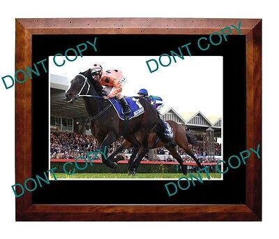 Black Caviar Aust Horse Racing Legend Large A3 Photo 7