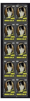 Border Collie Purebreed Dogs Strip Of 10 Mint Stamps 1