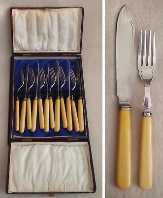 Set 12 Pc Antique England Silver Plate Bone Look Handles KNIVES FORKS Wood Box