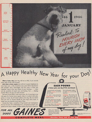 1946 Gaines Dog Food: Nourish Every Inch of My Dog Vintage Print Ad