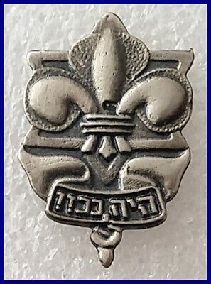 The Hebrew Scout Movement in Israel lapel pin badge