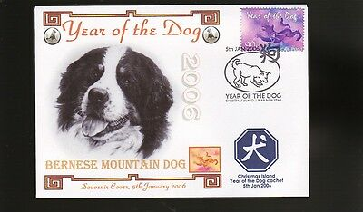Bernese Mountain Dog Year Of The Dog Souv Stamp Cover 1