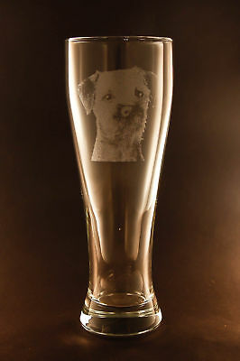 New! Etched Border Terrier on Pilsner Beer Glasses