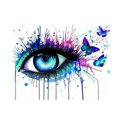 AU Framed Multi-colored Eye Paint By Numbers Kit Canvas Art Painting Home Decor