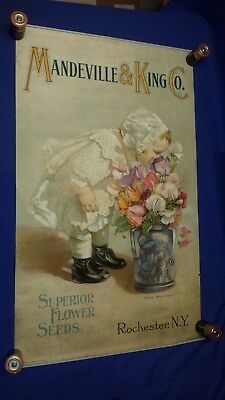 Victorian Mandeville & King Co New York Seed Spencer Sweet Peas GIRL Paper Sign