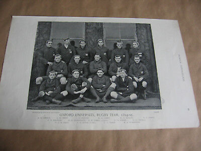 Oxford University Rugby  Union Team 1894-95 -  Original Photo Print