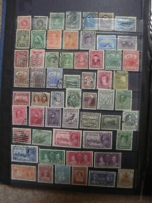 Collection Of Old Newfoundland (Canada) Stamps