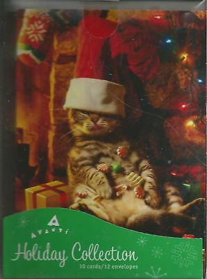Brand New Box Of Christmas Cards With Cat Sitting In A Stocking Cap By Fireplace