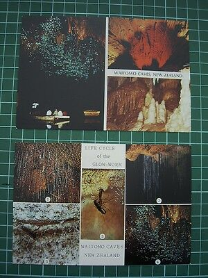 2 X 1980's  POSTCARDS - WAITOMO CAVES & GLOW-WORMS - NEW ZEALAND - NEW