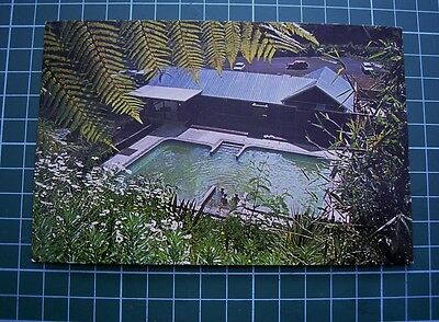 1970's  POSTCARD - FERNLAND SPA - TAURANGA -  NEW ZEALAND - DOW PRODUCTIONS USED