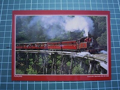 1980's POSTCARD - PUFFING BILLY RAILWAY THE DANDENONGS VIC Scancolor CS2057  NEW