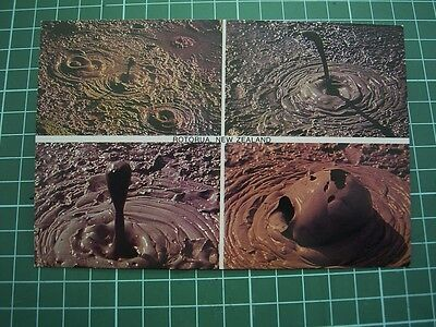 1980's  POSTCARD - MUD POOLS -  ROTORUA - NEW ZEALAND - NEW
