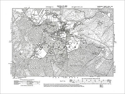 Lyndhurst, Bank, Emery Down, Pikeshill, Old Map Hampshire 1909: 72NW