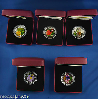 Five  $20.00  Venetian Glass Coins - Royal Canadian Mint