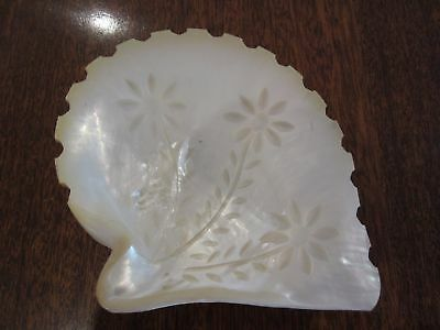 Beautiful Antique Pearl Shell Carved with Flowers Lovely Lustre