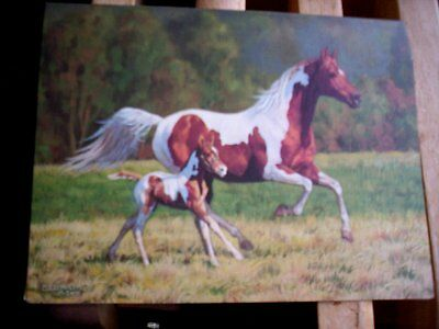 13  Pinto Paint Mare & Foal Horse  Blank Note Cards by Chris Cummings  NIB