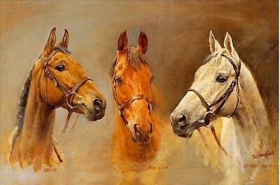 Desert Orchid-Red Rum-Arkle-We Three Kings-By Sue Crawford. 21cm x 30cm-BN-L@@K!