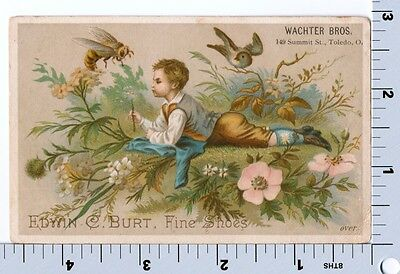 Edwin Burt Shoes   Victorian Trade Card   Boy w Birds and Bees  Wachter Bros OH