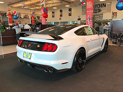 2017 Ford Mustang Shelby GT350R New 17 GT350R with Electronics Pack and Black Roof Build number HR449