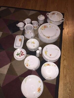 HV52 Piece Annabelle Fine China Set, 6 Hand Decorated Royal Schwabap Ter Steege