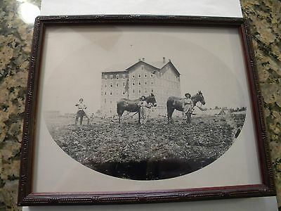 """Framed Penn State 1859 Picture Of Students & Mules Plowing By Old Main, 8"""" X 10"""""""