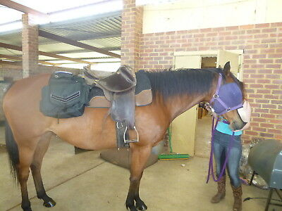 Horse-Saddle-Bags-for-Western-Stock-Half-breed-Saddles Horse-
