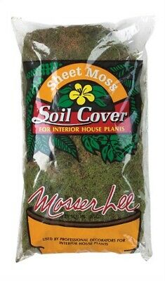 Mosser Lee Decorative Spanish Moss 250-Cubic Inch