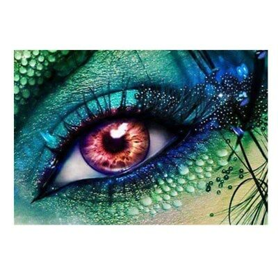 AU Eye 5D DIY Full Diamond Canvas Embroidery Painting Cross Stitch Home Decor