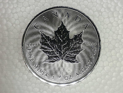 1 oz Silver Maple Coin, 2016, .9999 Excellent Condition In Coin Capsule