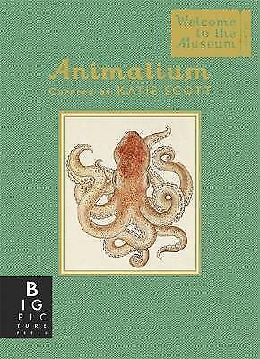 Animalium - Mini Gift Edition (Welcome to the Museum), Broom, Jenny, New Book