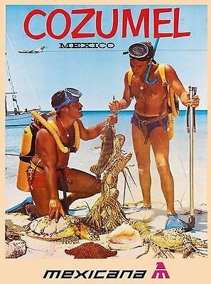 Cozumel  Mexico Vintage Airlines Mexican Travel Advertisement Art Poster Print