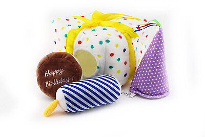 Midlee Birthday Present Find a Toy Dog Toy by