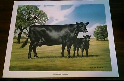 Frank Murphy F.C. Print Aberdeen-Angus Cow and Calf 1971 American Angus Assoc.