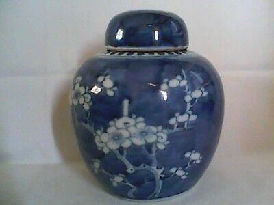 Antique Ginger Jar Handpainted With Prunus Blossom Chinese Quing Dble Ring Mark