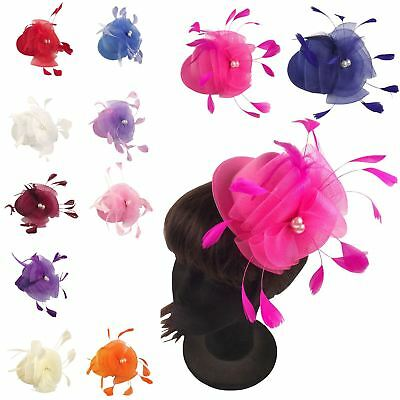 Mini Top Hat Fascinator Hair and Head Clip Fancy Dress Party