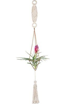 Premium Himmeli Air Plant Holder with Chain and Macrame Hanger Mobiles Decor