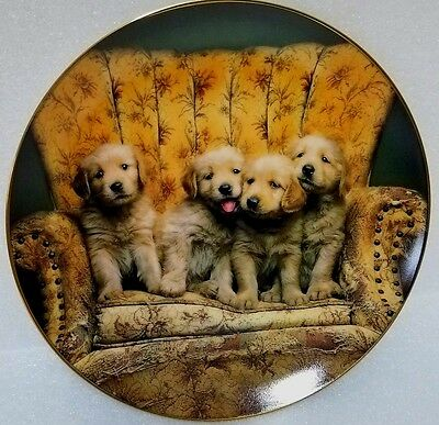 """GOLDEN RETRIEVER """"Best Seat in the House"""" by Keith Kimberlin COA"""