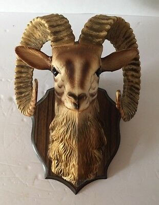 Vintage Hard Plastic Mounted Mountain Sheep Ram Head Faux Taxidermy Man Cave