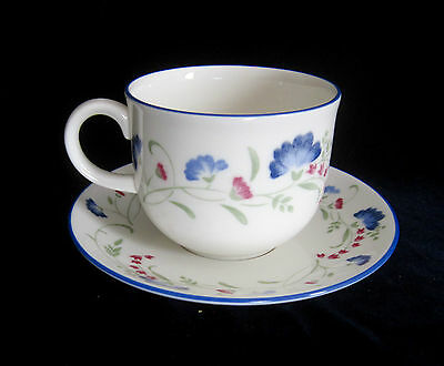 Royal Doulton Expressions Windermere Tea Cup and Saucer