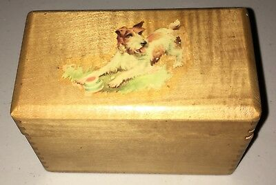 Fox Terrier Dove-Tailed  Knick-Knack Box for Pins, Notes, Coins, Stamps etc.