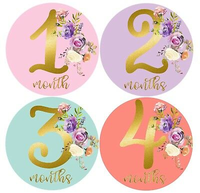 Girl Month Stickers Baby Girl Month Milestones Pastel & Gold Girl Belly Stickers