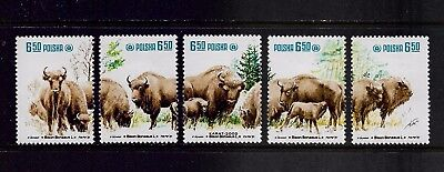 POLAND 1981 Protection of European Bison, mint set of 5, MNH MUH